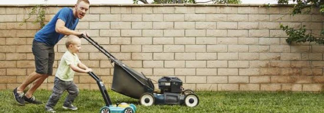 Best Lawn Mower In India 2021 – Reviews & Buyers Guide