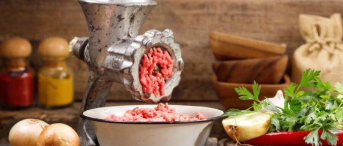 Best meat grinder in India